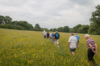 Walk around Haselbury Plucknett